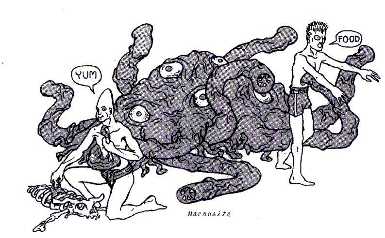 Macrosite by Erol Otus